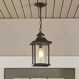 Barrow 1- Light Outdoor Hanging Lantern By Birch Lane™ Ceiling Lights