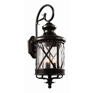 Haskins Outdoor Wall Lantern
