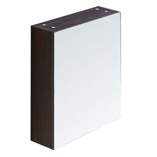 Top 17.7 X 26.8 Surface Mount Medicine Cabinet By InFurniture