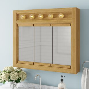 Check Prices Steubenville 36 x 30 Surface Mount Medicine Cabinet with Lighting ByAndover Mills
