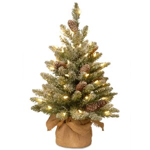 snowy concolor fir 2 green artificial christmas tree with 50 led white lights stand - Mini Christmas Tree With Lights