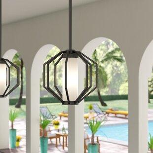 Buy clear Wester 1-Light Outdoor Pendant By Brayden Studio