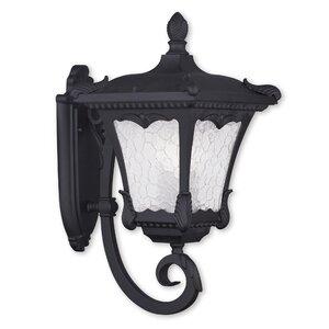 Futrell 3-Light Outdoor Sconce