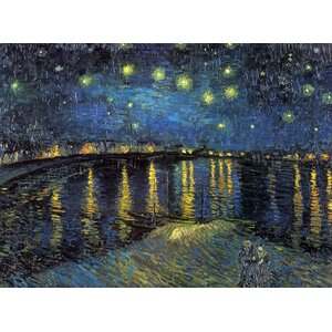 The Starry Night by Vincent Van Gogh on Canvas by Trademark Fine Art