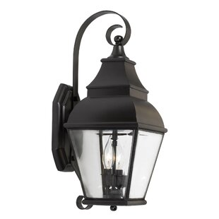 Reviews Pinevalley 2-Light Outdoor Wall Lantern By Darby Home Co