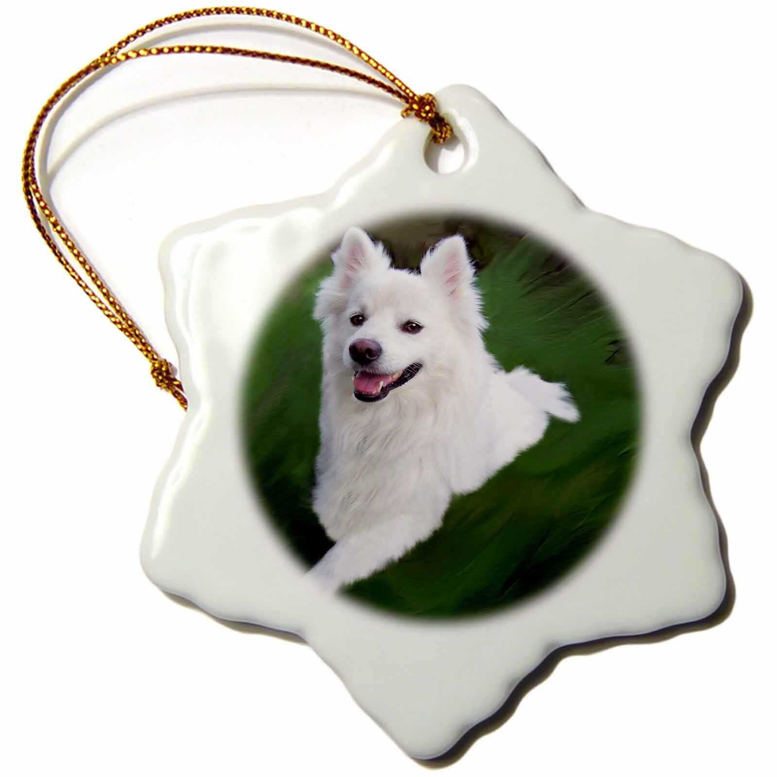 The Holiday Aisle American Eskimo Holiday Shaped Ornament Wayfair