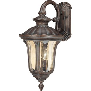 Purchase Pinney 2-Light Outdoor Wall Lantern By Astoria Grand