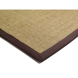 Matias Chocolate Area Rug