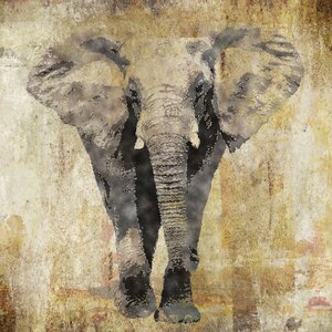 'Elephant' by Brandi Fitzgerald Graphic Art on Wrapped Canvas by Buy Art For Less