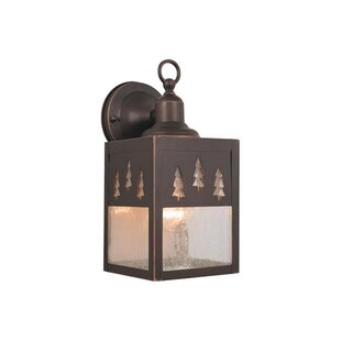 Compare Josefina Rustic 1-Light Outdoor Wall Lantern By Loon Peak