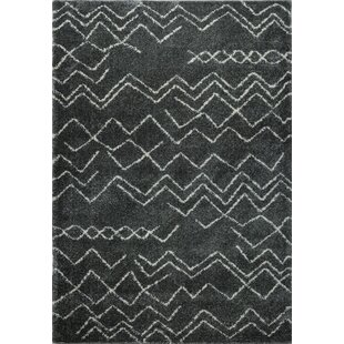 Affordable Cedar Shaggy Dark Grey Area Rug By Foundry Select
