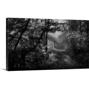 A Sorrow Beyond Dreams by Norbert Maier Photographic Print on Canvas by Great Big Canvas