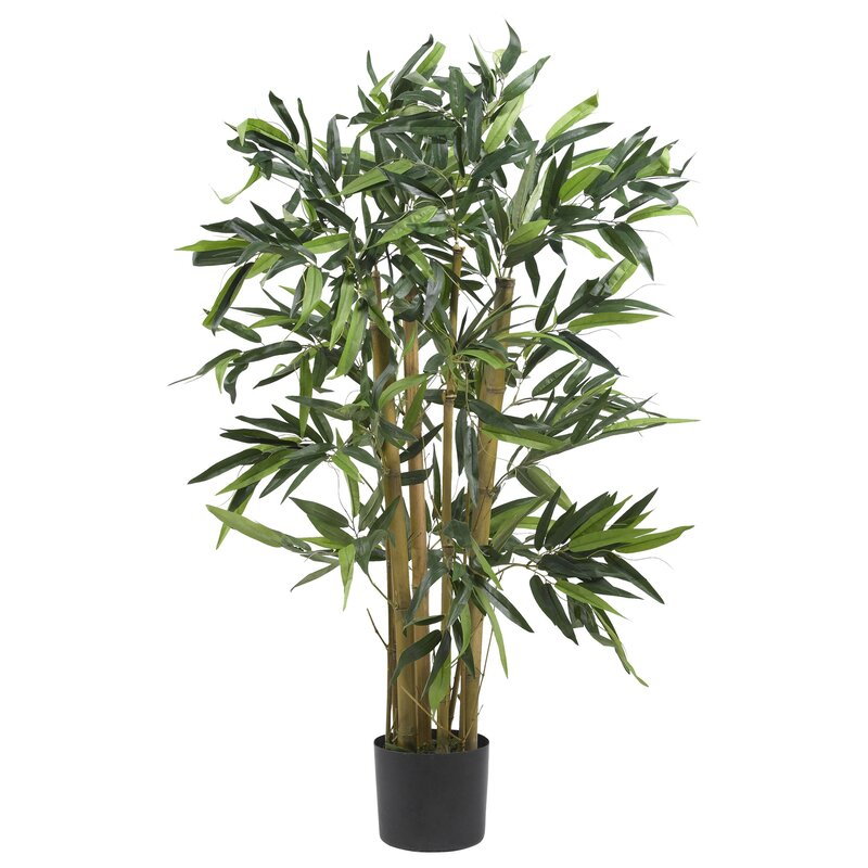 entracing palm tree type house plant. Biggy Bamboo Tree in Planter Nearly Natural  Reviews Wayfair