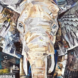 'Elephant's Gaze' Graphic Art Print on Canvas by East Urban Home