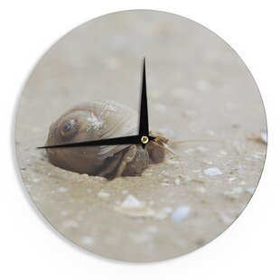 Angie Turner 'Hermit Crab' 12 Wall Clock by East Urban Home