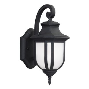 Low priced Teri 1-Light Outdoor Wall Lantern By Fleur De Lis Living