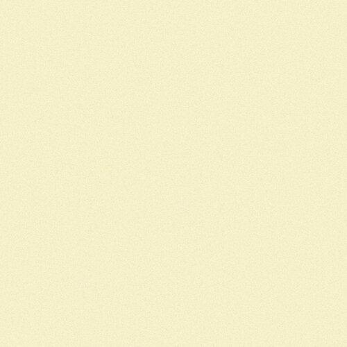 Schiebegardine Salacia (1 Stück) 17 Stories Farbe: Champagner | Heimtextilien > Gardinen und Vorhänge > Schiebegardinen und Schiebevorhänge | 17 Stories