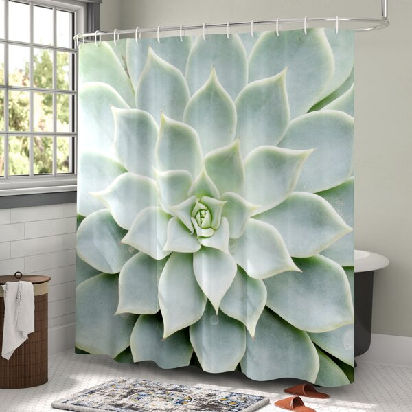 Ebern Designs Hadleigh Cactus Plant Flower Zoomed Photo