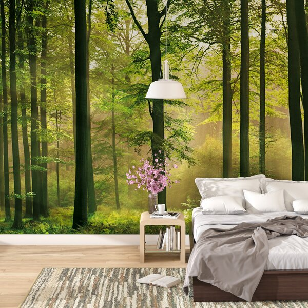 Latitude Run Euan Autumn Forest Wall Mural & Reviews | Wayfair
