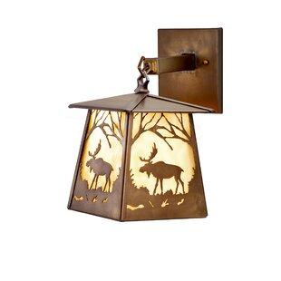 Reviews 1-Light Outdoor Wall Lantern By Meyda Tiffany