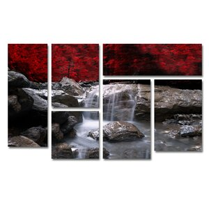 Red Vison by Philippe Sainte-Laudy 6 Piece Photographic Print Set by Trademark Fine Art