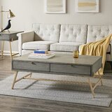Vitale Coffee Table with Storage by Brayden Studio®