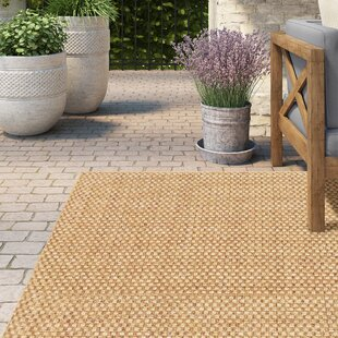 Outdoor Rugs You Ll Love Wayfair