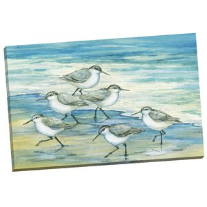 Surfside Sandpiper by Paul Brent Painting Print on Wrapped Canvas by Portfolio Canvas Decor