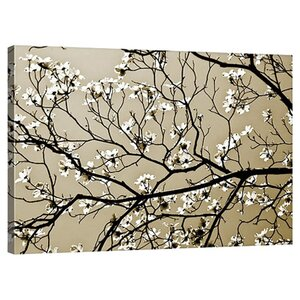 Dogwood I by Alan Hausenflock Gallery Photographic Print on Wrapped Canvas by Great Big Canvas