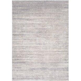 Brooks Distressed Modern Sleek Gray/Cream Area Rug