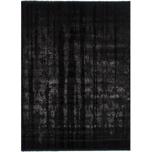 Best Choices Purmerend Black Area Rug By Brayden Studio