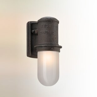 Buy clear Odelia Industrial 1-Light Outdoor Sconce By 17 Stories