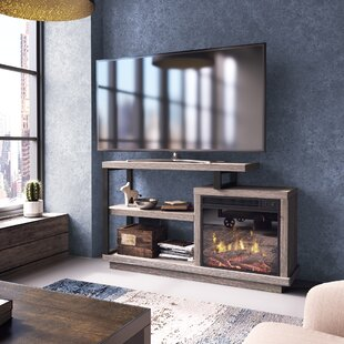 Louann TV Stand for TVs up to 55 with Fireplace