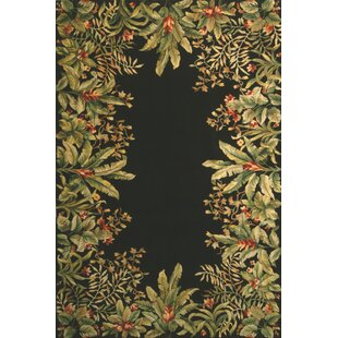 Searching for Elks Black/Green Tropical Border Area Rug ByBay Isle Home