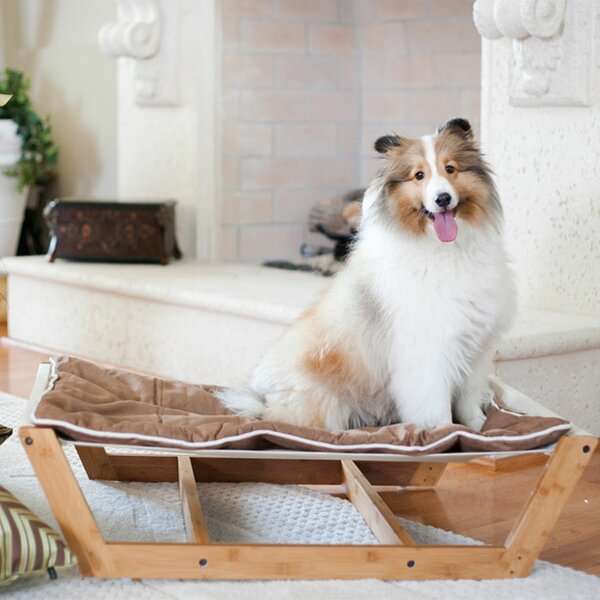 pet furniture you ll love wayfair