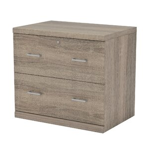 Charmant Locking Wood Filing Cabinets Youu0027ll Love