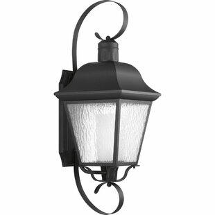 Progress Lighting Outdoor Wall Sconce Progress lighting wayfair andover 1 light wall lantern by progress lighting workwithnaturefo