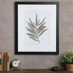 Fern Framed Print I by Birch Lane™