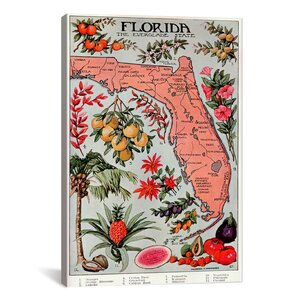 'State Map of Florida (Natural Resources) - Vintage Poster' Graphic Art Print by East Urban Home