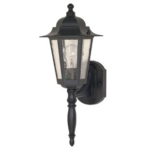 Mayer 1-Light Outdoor Wall Lantern By Alcott Hill Outdoor Lighting