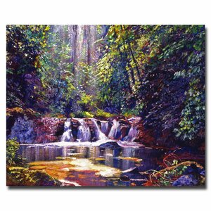 Foaming Water Forest by David Lloyd Glover Painting Print on Wrapped Canvas by Trademark Fine Art