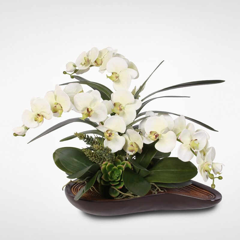 floral home decor orchid floral design wayfair.htm brayden studio handmade phalaenopsis orchid floral arrangement  brayden studio handmade phalaenopsis