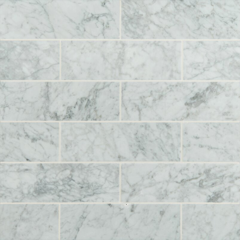 4  x 12  Honed Marble Tile in Arabescato Carrara. MSI 4  x 12  Honed Marble Tile in Arabescato Carrara   Reviews