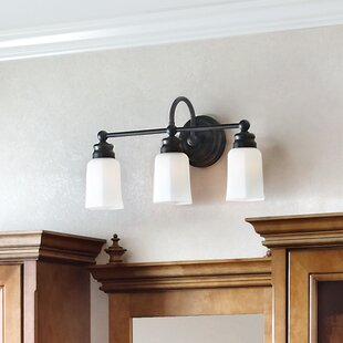 Find the perfect Astoria 3-Light Vanity Light By Darby Home Co