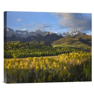 'Quaking Aspen Forest and Mount Sneffels' Photographic Print on Canvas by East Urban Home