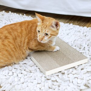 Eco Friendly Cat Scratching Board