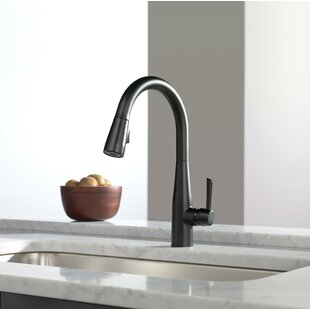 Essa Pull-Down Single Handle Kitchen Faucet with Magnatite Docking and  Diamond Seal Technology
