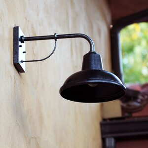 Dresden 1-Light Outdoor Barn Light