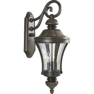 Savings Triplehorn 3-Light Wall Lantern By Alcott Hill