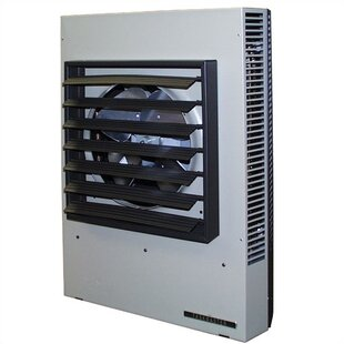 341,000 BTU Wall Insert Electric Fan Heater with Thermostat by TPI
